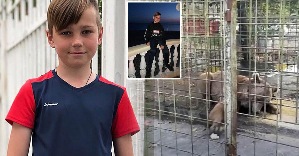 Tragédia chlapca roztrhali medvede v ZOO
