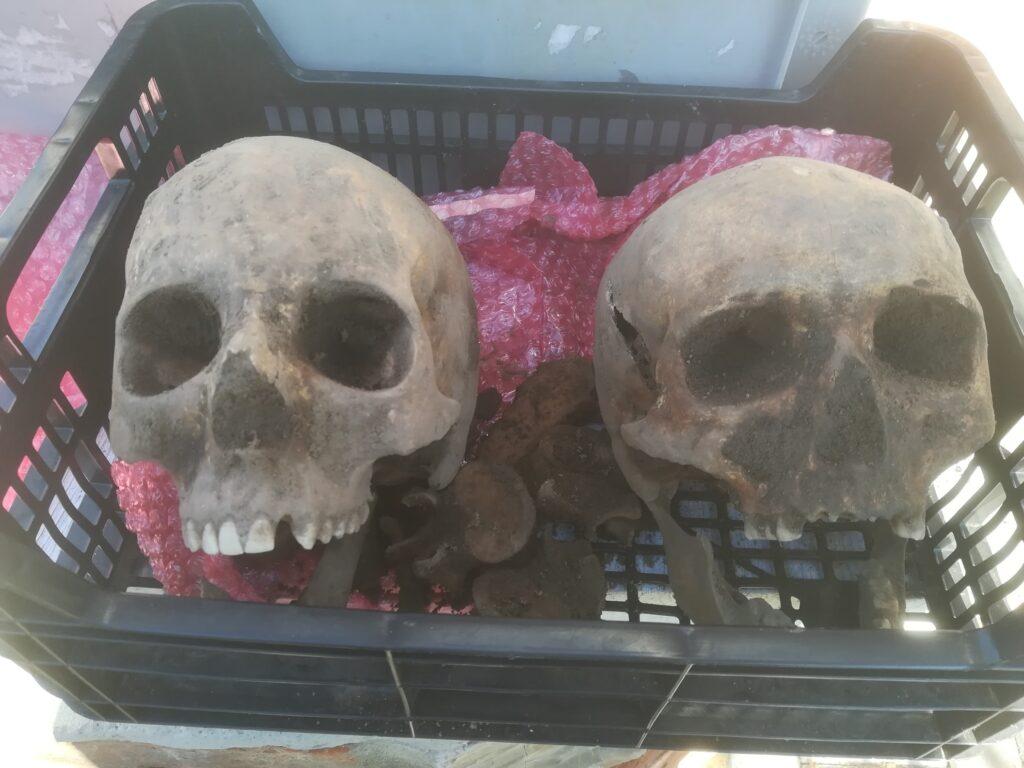 Nájdené ľudské lebky v Gbeloch pri Trnave